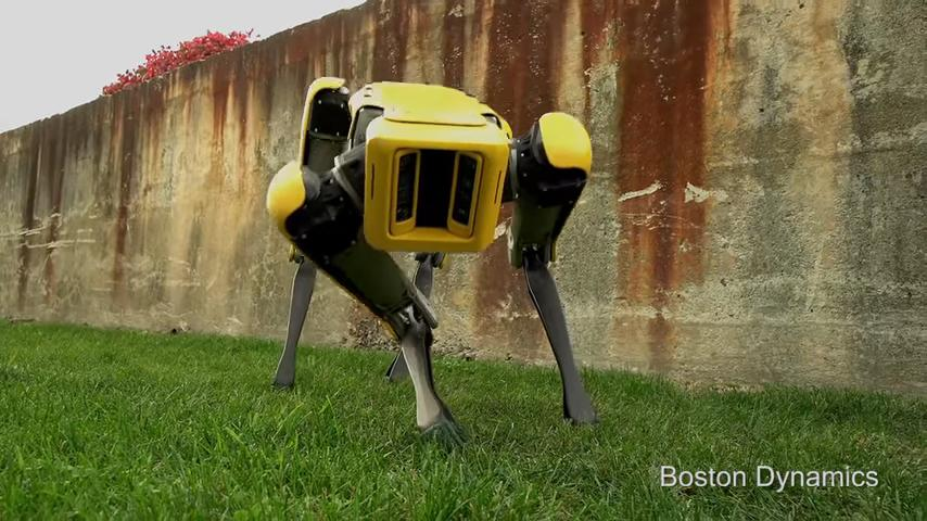 Boston Dynamics представила «милого» четвероногого робота (ВИДЕО)