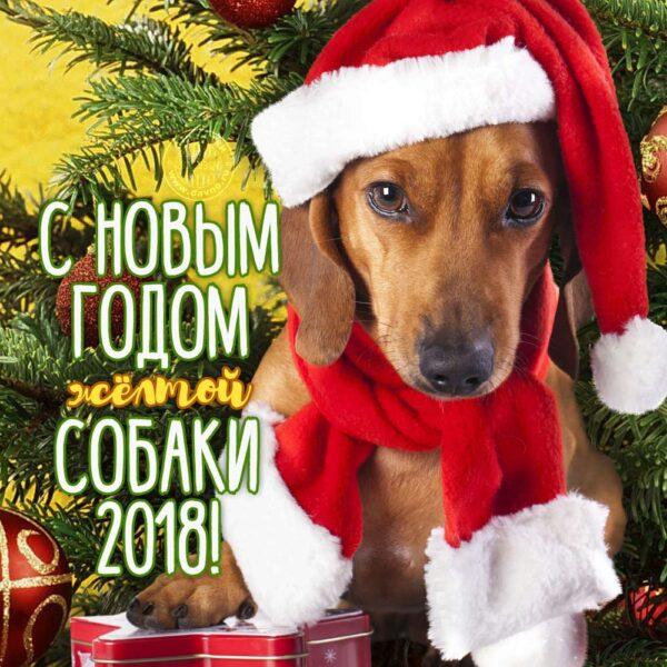 Новогодние картинки с поздравлением 2018
