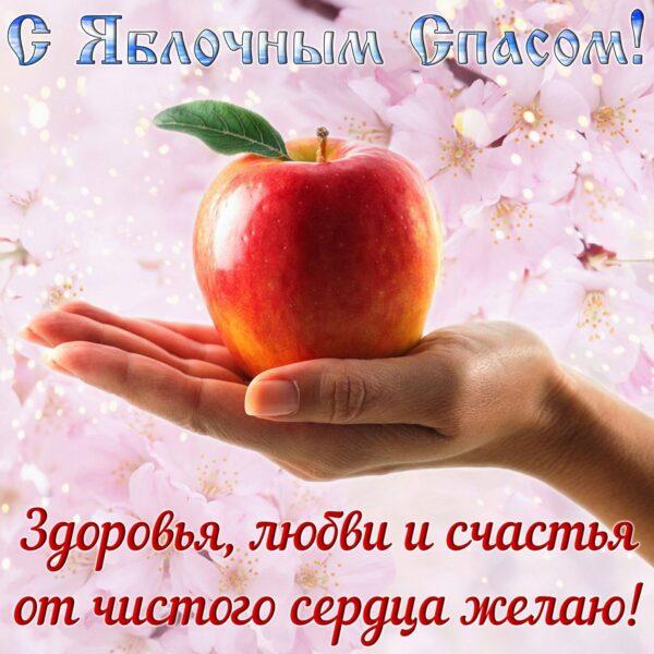 Днем, прикольные картинки с надписями яблочный спас